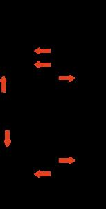 basic-gp-schritt2